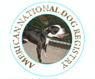 American National Dog Registry
